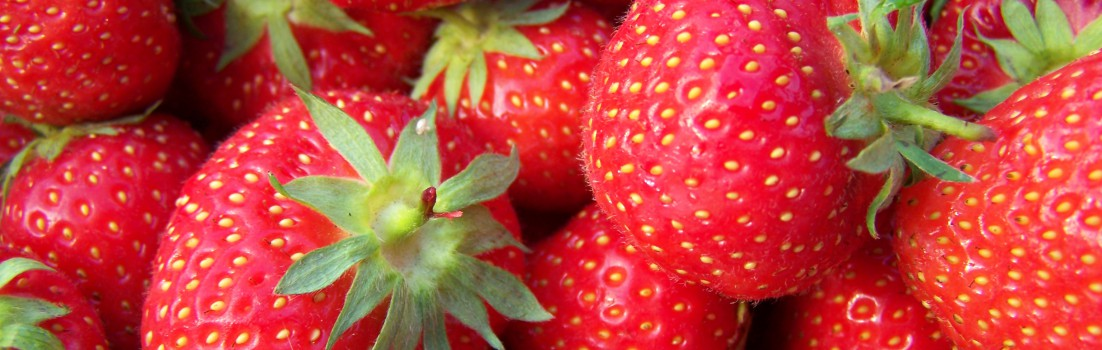 cropped-strawberries.jpg