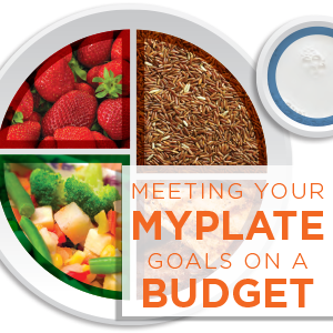Meeting your MyPlate Goals on a Budget Cookbook