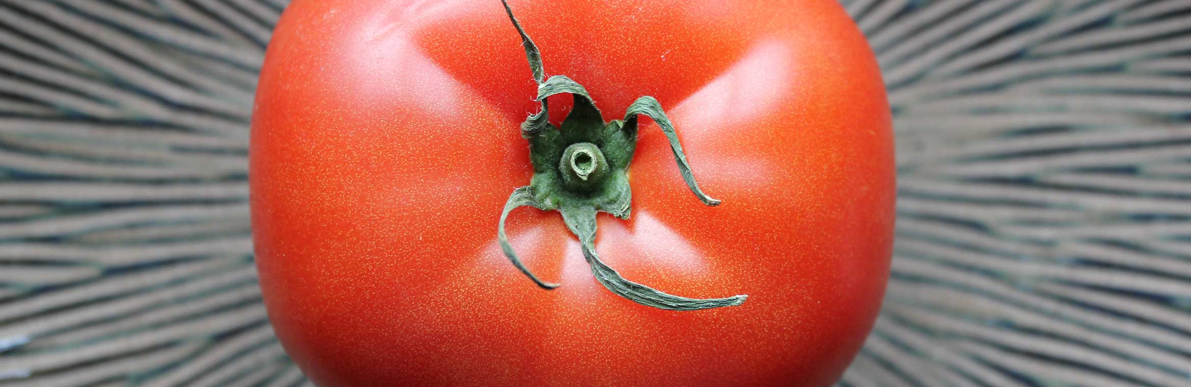 close up of a tomato